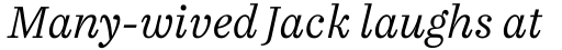 FF Casus Pro Light Italic sample