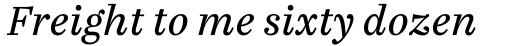 FF Casus Pro Book Italic sample