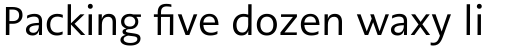 PMN Caecilia Sans Pro Text Regular sample