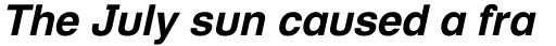 Helvetica Textbook Bold Oblique sample