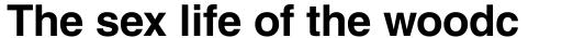 Helvetica Bold sample