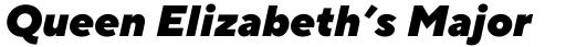 TT Norms Pro Black Italic sample