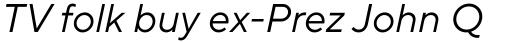TT Norms Pro Italic sample