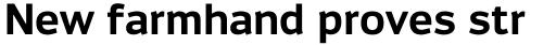 Engel New Sans Semi Bold sample