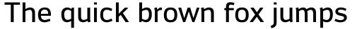 Engel New Sans Medium sample