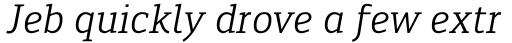 Engel New Serif Italic sample