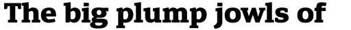Engel New Serif Bold sample
