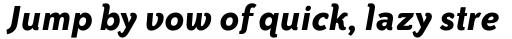 ITC Bailey Sans Pro Bold Italic sample