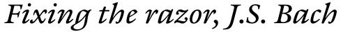 ITC Galliard eText Std Italic sample