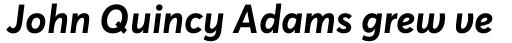 Averta Cyr Bold Italic sample