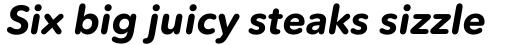 Avenir Next Rounded Std Bold Italic sample