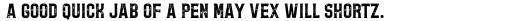 Bolton Print Serif Regular sample