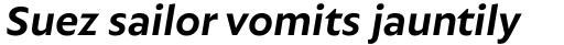 Autor Bold Italic sample
