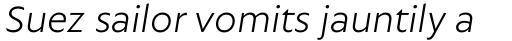 Autor Light Italic sample