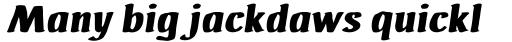 Ad Hoc Bis Italic sample