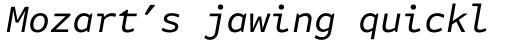 FF Attribute Mono Italic sample