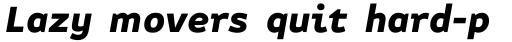 FF Attribute Text Black Italic sample