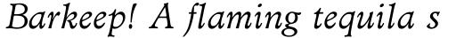 Administer Book Italic sample