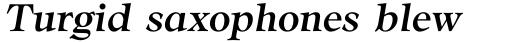 CG Adroit Medium Italic sample