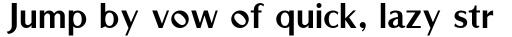 Rubino Sans Fill sample