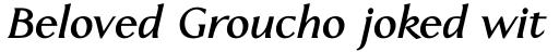 Linotype Aperto Std Bold Italic sample