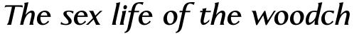 Linotype Aperto Pro Bold Italic sample