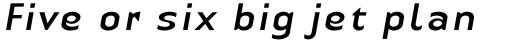 Linotype Authentic Sans Pro Italic sample
