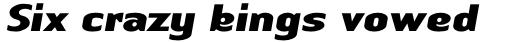 Linotype Authentic Sans Std Black Italic sample
