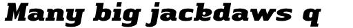 Linotype Authentic Serif Std Black Italic sample
