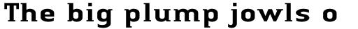 Linotype Authentic Small Serif Pro Medium sample