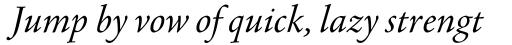 Agmena Paneuropean Book Italic sample