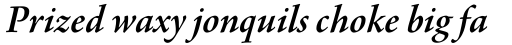 Agmena Paneuropean SemiBold Italic sample