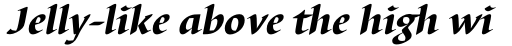 Barbedor Std Heavy Italic sample