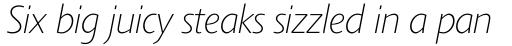 Agilita Std Thin Italic sample