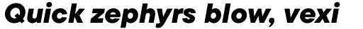 TT Commons Black Italic sample