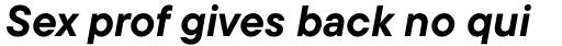 TT Commons Bold Italic sample
