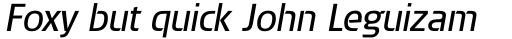 Brda Pro Italic sample