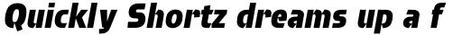 Brda Pro Extra Bold Italic sample