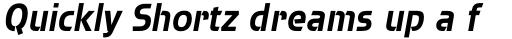Brda Pro Bold Italic sample