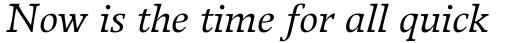 Breughel Std 56 Italic sample
