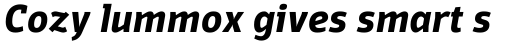 Domotika Bold Italic sample