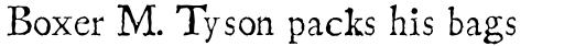 Linotype Compendio Pro Regular sample