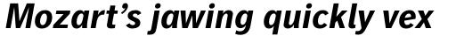 Linotype Gothic Pro Bold Italic sample
