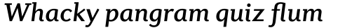 Diverda Serif Pro Medium Italic sample