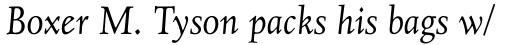 Juliana Text Std Italic sample