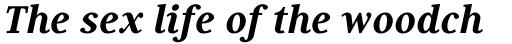 Generis Serif Pro Heavy Italic sample