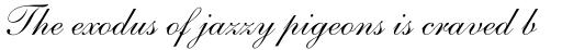 Shelley Script Cyrillic Regular sample