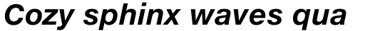 Neue Helvetica eText Std 76 Bold Italic sample