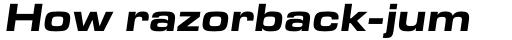 Eurostile Next Pro Extended Bold Italic sample