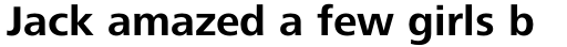 Frutiger Next Cyrillic Bold sample